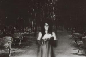 Katrina Spectre, proyecto Auto da fé