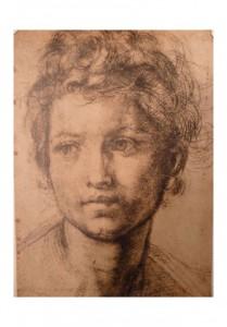 Andrea del Sarto - Retrato -