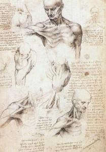 Leonardo Da Vinci 01