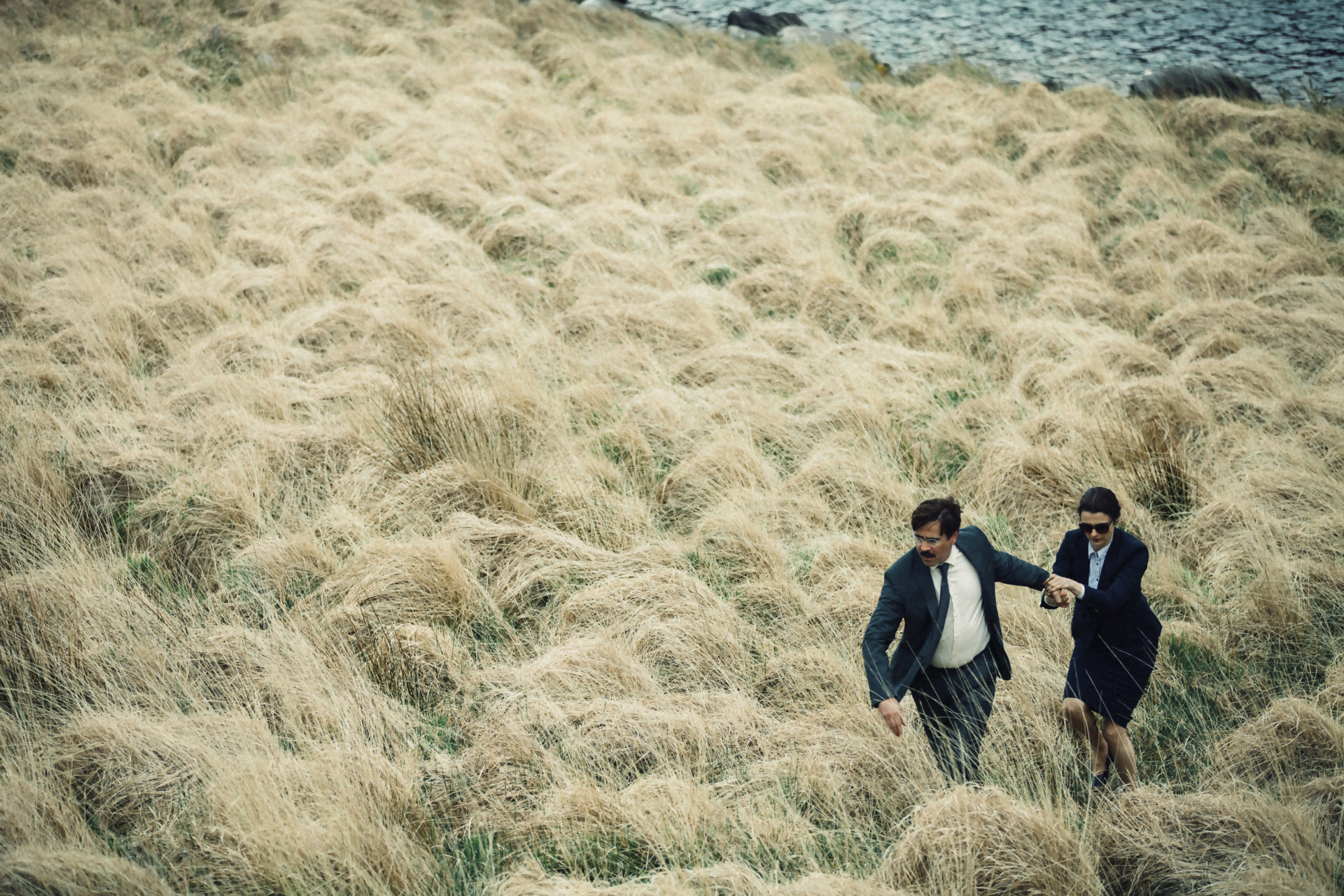 'The Lobster' de Yorgos Lanthimos