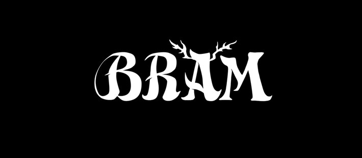 Campaña de Bram en Verkami