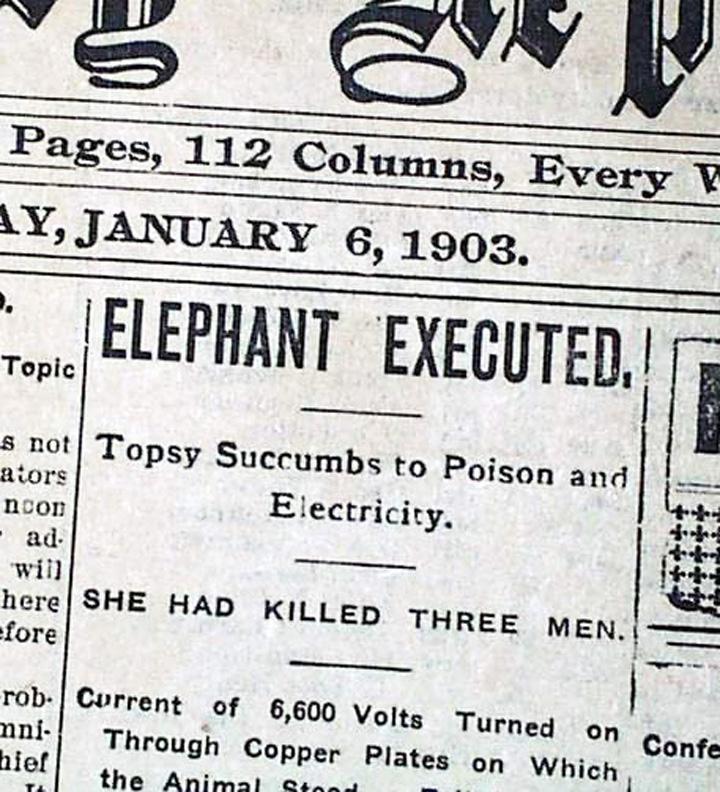 Recorte prensa 1903