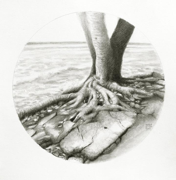 DIBUJO ADELANTE las mareas grafito sobre papel