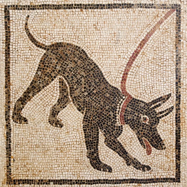 Mosaico de la casa de