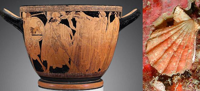 Eschifo de figuras rojas - Rapto de Helena - Hierón y Makron 500-480 a.C -almacendeclásicas.blogspot.com - chlamys pesfelis natuurlijkmooi