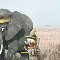 Funny_Explorers