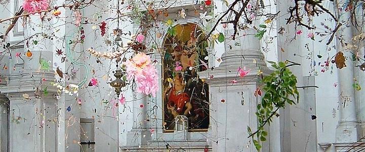 Falling Garden. 2008 en la Biennale di venecia. San Stae del canal grande