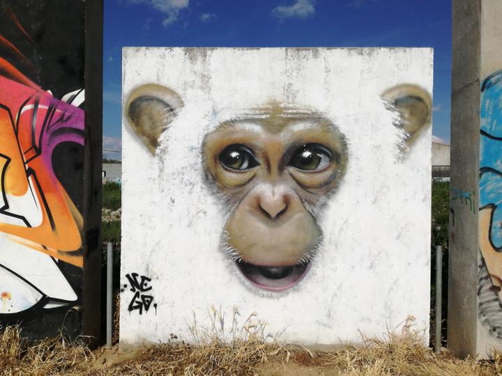 Graffti, arte urbano, street art, en Salamanca, artistas urbanos