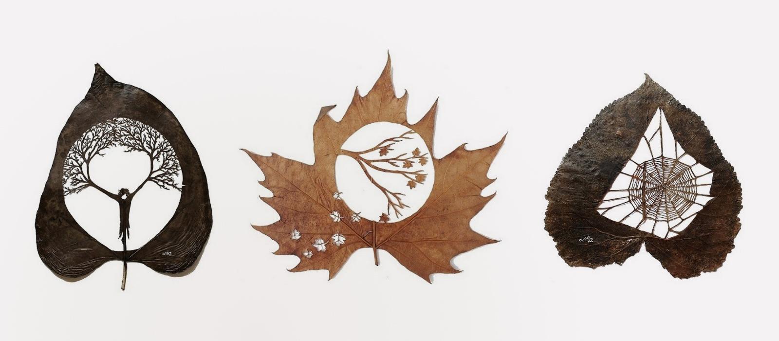hojas perforadas cortadas