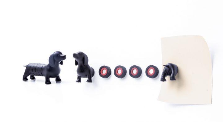 Divertido set de imanes perro salchicha marca Qualy