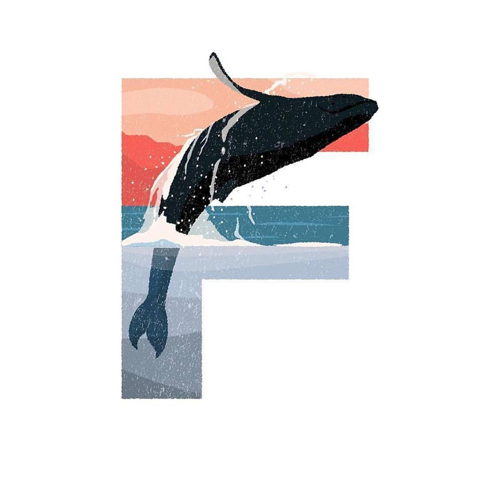 "36 Days of Type - ""F"" is for Fin whale by @michimc13"